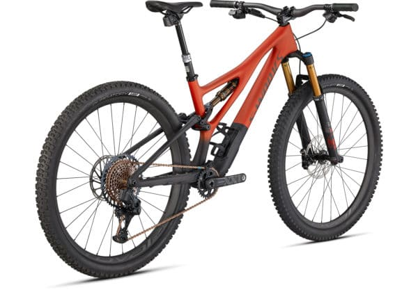 2021 Specialized S-Works Stumpjumper - Satin Redwood-Smoke-Carbon (4)